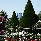 Parc de Bagatelle Paris (1) by Goca