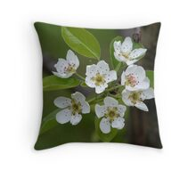 Delicates Throw Pillow