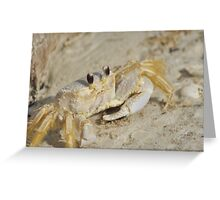 Ghost Crab, As Is Greeting Card