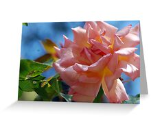 Rosy Pink Greeting Card