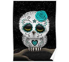 Cute Teal Blue Day of the Dead Sugar Skull Owl Poster