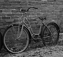 Trashed Bikes by WisePhoto