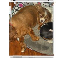 Let sleeping dogs lie... iPad Case/Skin