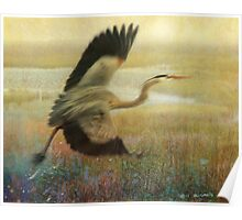 great blue heron flight Poster