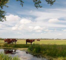 Landscape by Willem Hoekstra