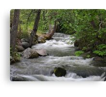 Lithia Creek Canvas Print