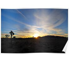 Sunset At Joshua Tree National Park Poster