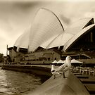 Opera House by Andrew Walker