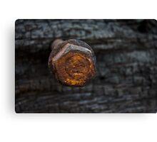 Rusty Nut Canvas Print