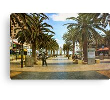 Another day at 'The Bay' Metal Print