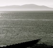 Solway Firth by Lou Wilson