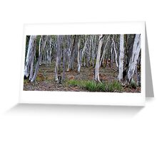 HILL END TREES Greeting Card