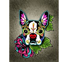 Day of the Dead Boston Terrier Sugar Skull Dog Photographic Print