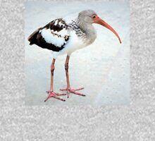 Juvenile white ibis Mens V-Neck T-Shirt