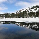 Fall Creek Mountain by Patty Boyte