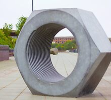 Nut from Sunderland riverside by stay-focussed