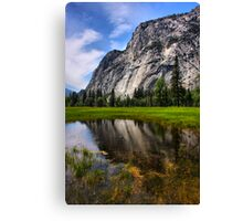 Reflecting in the Meadow Canvas Print