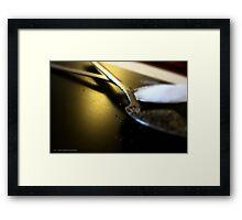 SALT & PEPPER # 027 Framed Print