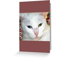Beautiful companion on abstract background Greeting Card