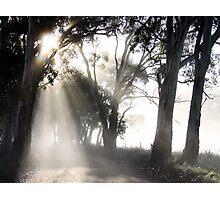 ~ Sun Burst ~ Photographic Print