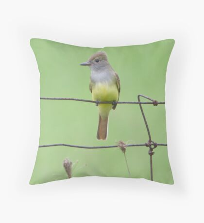 GC Throw Pillow