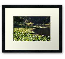 Jubilee Lake Framed Print