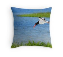 American Oyster Catcher Throw Pillow