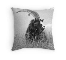 Bighorn 2 Throw Pillow