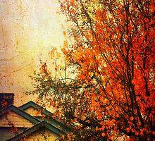Autumn in Bendigo by Caroline Duncan