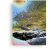 beyond the scarred and barren shores Canvas Print