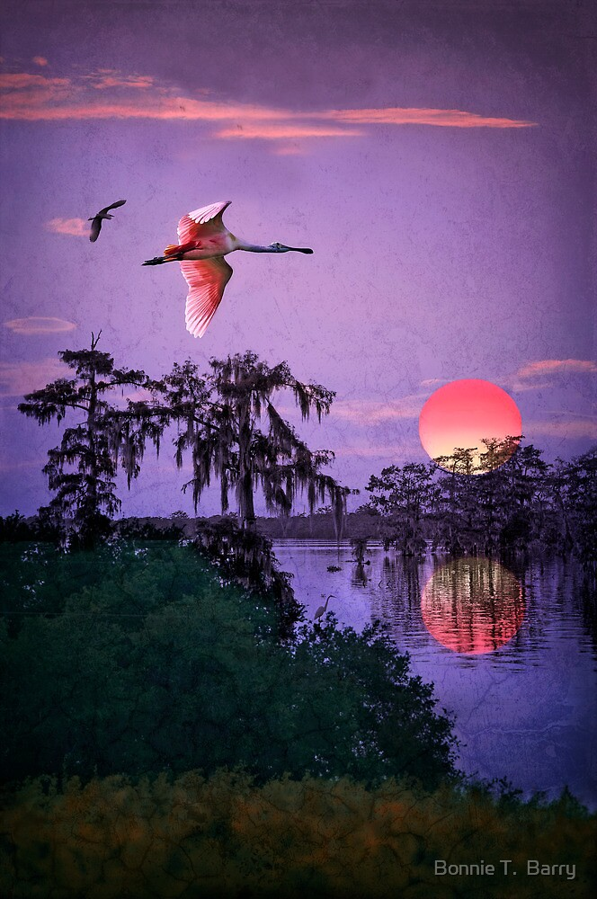 Night Falls over the Swamp by Bonnie T.  Barry