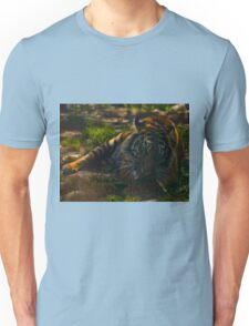 Tiger grooming Unisex T-Shirt