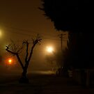 Fog in the Night by Khrome Photography