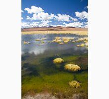 Tara Salt Flat coloured landscape II Unisex T-Shirt