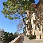 Deia, Mallorca, Spain by Nick  Gill