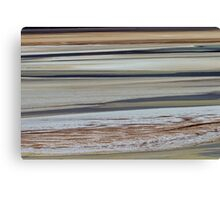 Horizontal running Canvas Print