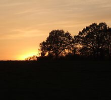 Sunset at Grafton,Herefordshire on the 4th May 2010 by Robert Lewis