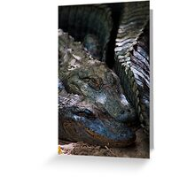 """Scaly Snuggles"" Alligators at Cheyenne Mountain Zoo Greeting Card"