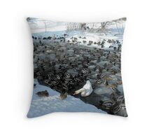 Duck Soup 3 Throw Pillow