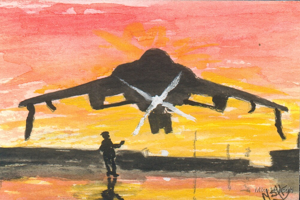 Harrier at Sunset by Mike HobsoN