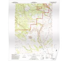 USGS Topo Map Oregon Camp Currey Spring 279247 1992 24000 Poster