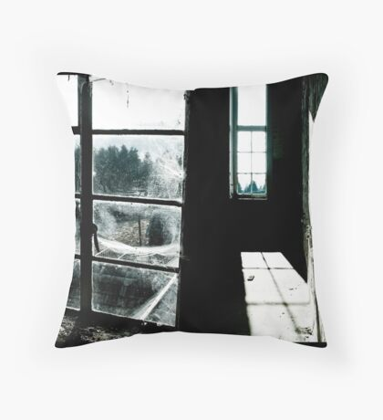 Dual Aspect Throw Pillow