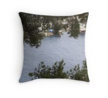 framing the water Throw Pillow