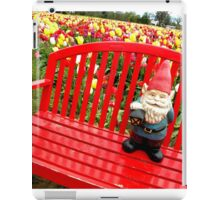Rainbow Park Gnome iPad Case/Skin