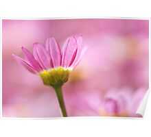 Gentle Floral In Pink Poster