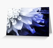 Blue Flower Fade Greeting Card