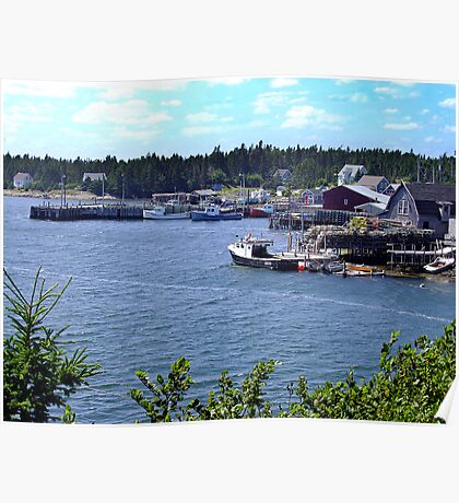 Bush Island-Nova Scotia Poster