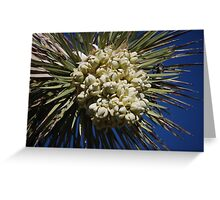 Joshua Tree In Bloom Greeting Card