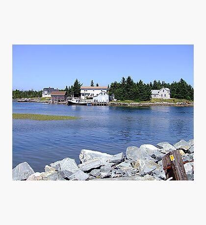 Bush Island (2) Photographic Print