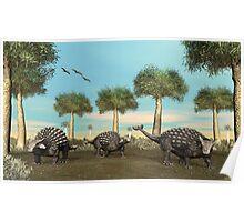 Three Ankylosaurus Poster